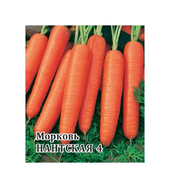 Семена Морковь Нантская 4, 100 г