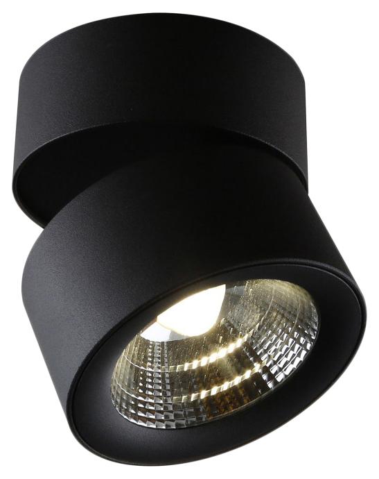 Потолочный светильник Divinare Urchin 1295/04 PL-1