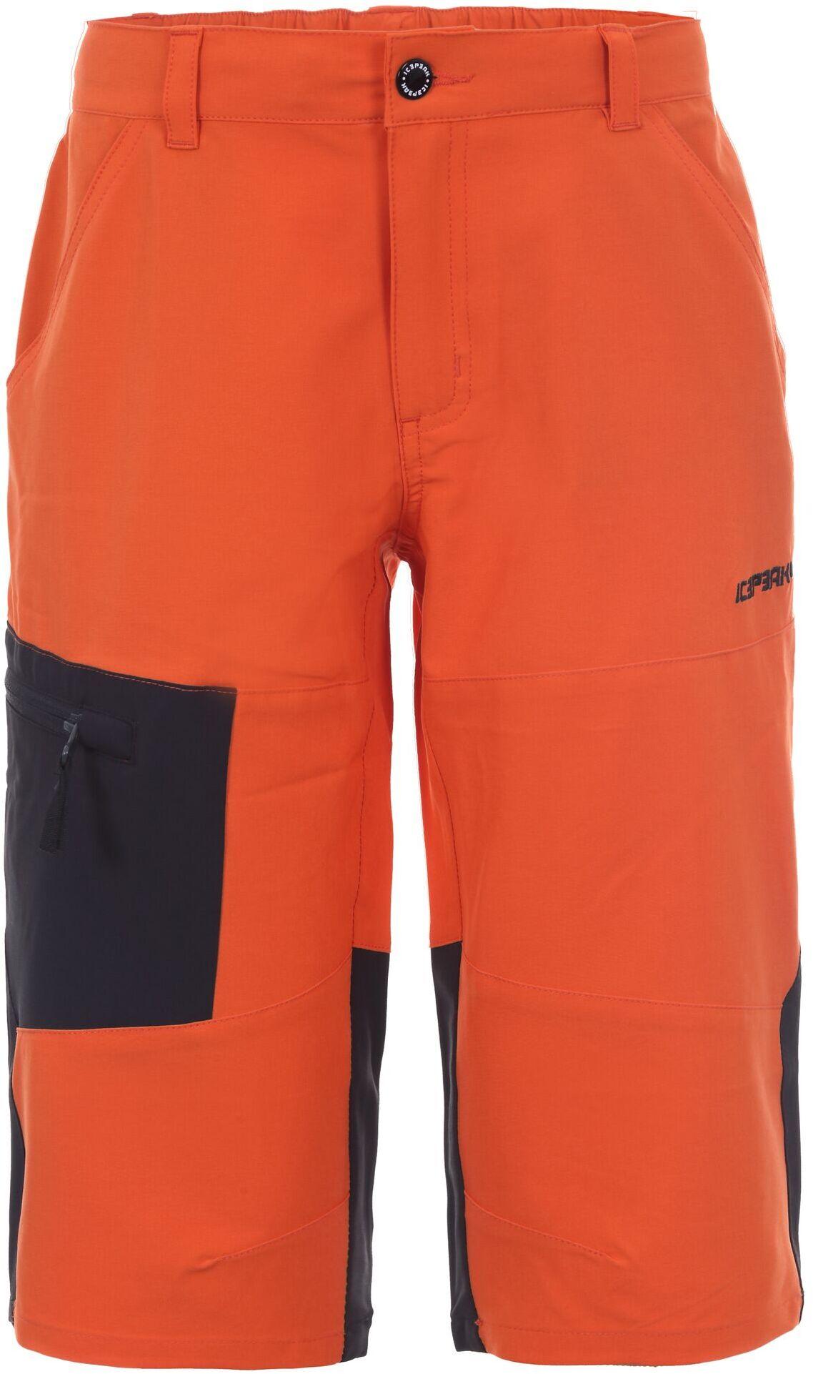 Шорты Для Активного Отдыха Icepeak 2020 Kobe Jr Burned Orange Рост:176