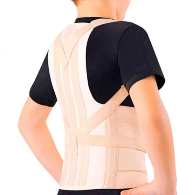 Купить Корсет грудно-пояснично-кресцовый для взрослых КГК 110 Orto бежевый, р.M2