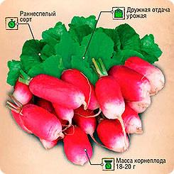 Семена Редис 18 дней, 6 г, Тимирязевский питомник