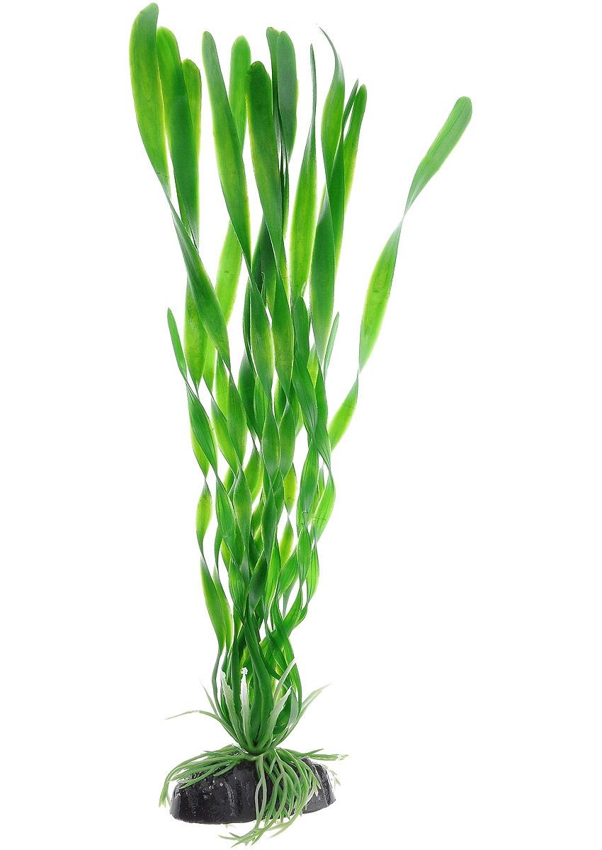 Растение для аквариума Barbus, пластик, Валиснерия спиральная