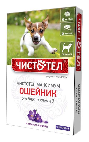 Ошейник для собак против блох и клещей Чистотел Максимум фиолетовый, 65 см