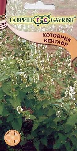 "Семена. Котовник ""Кентавр"" (10 пакетов по 0,2 г) (количество товаров в комплекте: 10)"