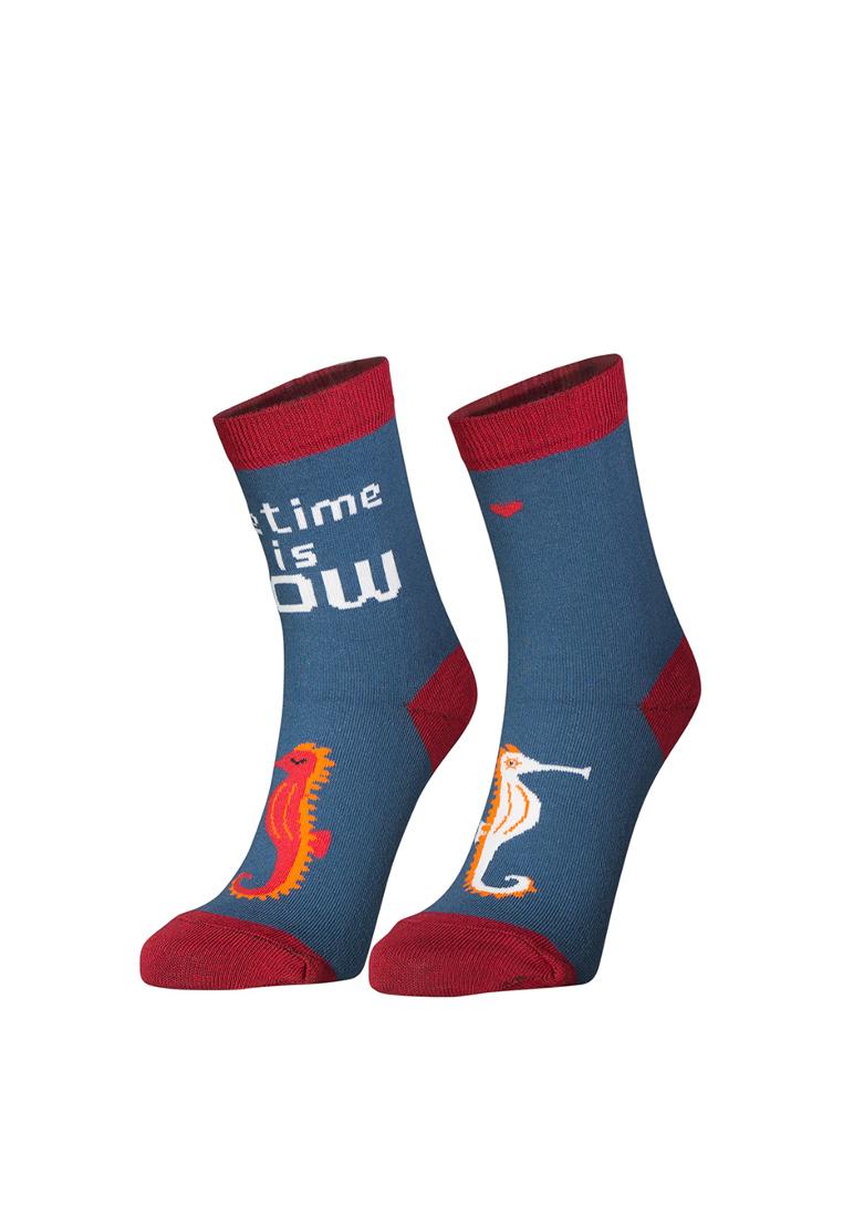 Носки женские big bang socks Морской конек синие 35-39