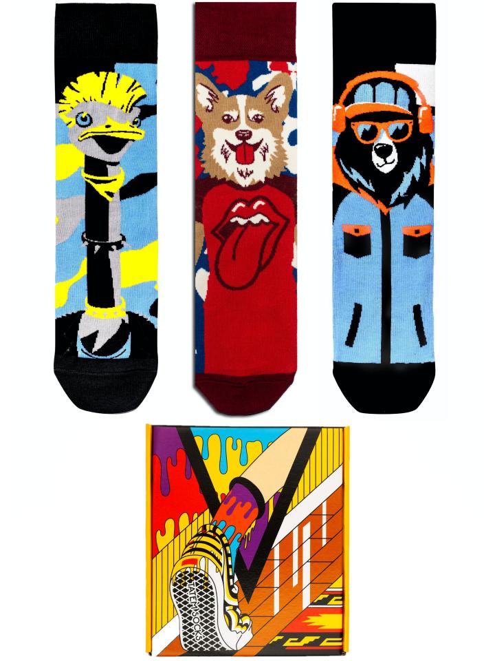 Подарочный набор носков мужской Tatem Socks 703 разноцветный 36-40