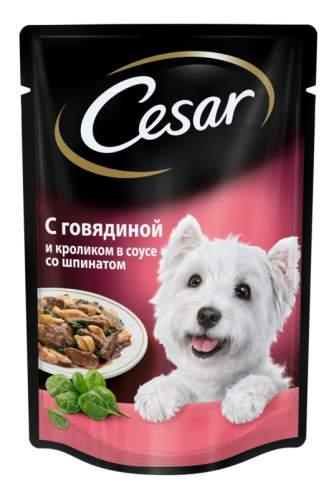Миниатюра Влажный корм для собак Cesar, с говядиной и кроликом в соусе со шпинатом, 24шт, 100г №1