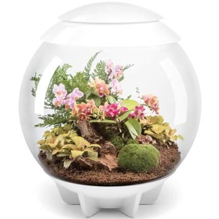 Флорариум для растений biOrb AIR 60 White, белый, 51 х 51 х 57 см