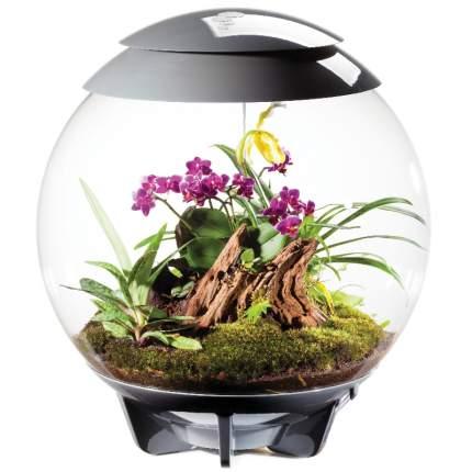 Флорариум для растений biOrb AIR 60 Grey, серый, 51 х 51 х 57 см
