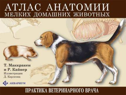 Книга Атлас анатомии мелких домашних животных