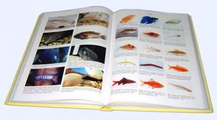 Пресноводный тропический аквариум. Профессиональные советы