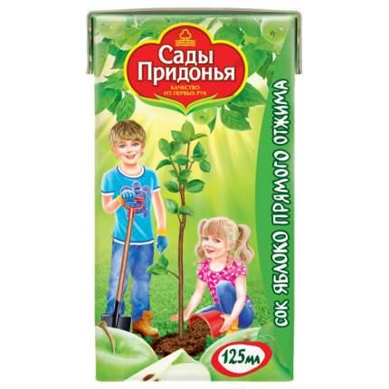Сок Сады Придонья Яблоко прямого отжима с 4 мес 125 мл