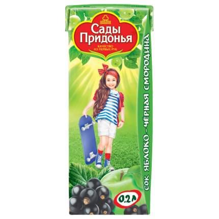 Сок Сады Придонья Яблоко и черная смородина с 5 мес 200 мл