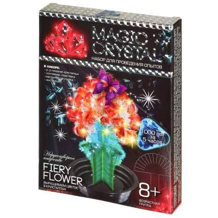 DANKO TOYS Набор для проведения опытов №8 Нерукотворное искусство. Fiery flower OMC-01-08