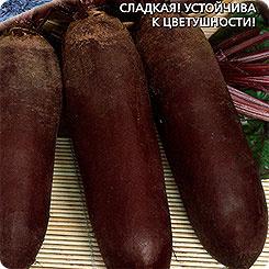 Семена Свекла Генеральская, 2 г, Уральский дачник