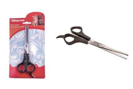 Ножницы для груминга Дарэлл (большие)