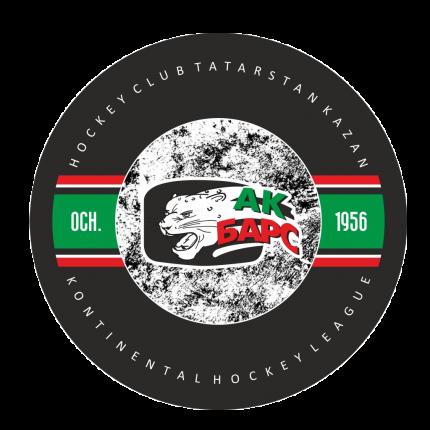 Шайба Hockey односторонняя одноцветная 3 АК БАРС
