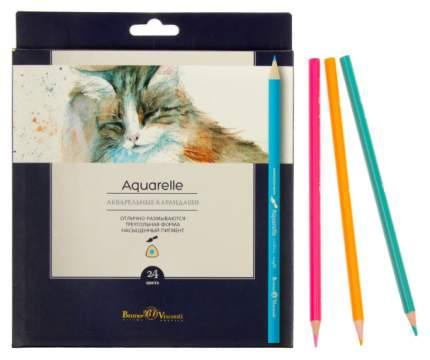"""Набор акварельных карандашей """"Aquarelle"""", 36 цветов"""