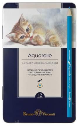 """Карандаши акварельные с ложементом """"Aquarelle"""", 12 цветов"""