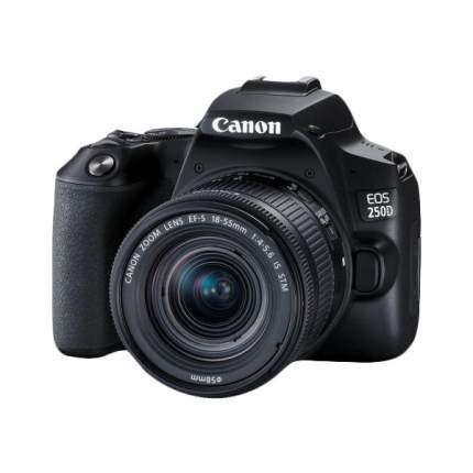 Фотоаппарат зеркальный Canon EOS 250D 18-55mm IS STM Black