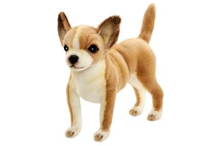 Мягкая игрушка Anna Club Plush Собака, Чихуахуа 27 см
