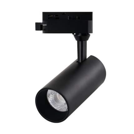 Светильник Arte Lamp REGULUS A4568PL-1BK