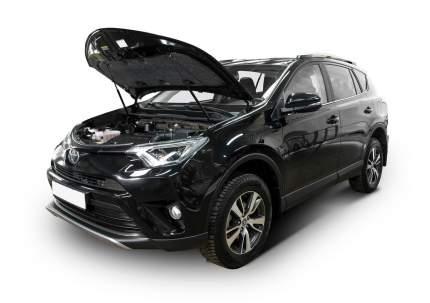 Упоры капота АвтоУПОР для Toyota RAV 4 IV CA40 2012-2015 2015-2019, 2 шт., UTORAV013