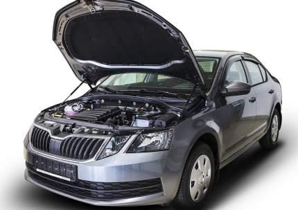 Газовые упоры капота АвтоУпор для Skoda Octavia A7 2013-2019, 2 шт., USKOA7012
