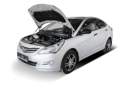 Упоры капота АвтоУПОР для Hyundai Solaris I 2010-2014 2014-2017, 2 шт., UHYSOL012