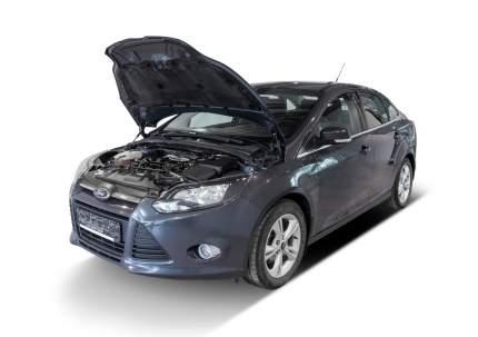 Упоры капота АвтоУПОР для Ford Focus III 2011-2015 2014-2019, 2 шт., UFDFOC021