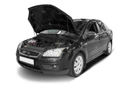 Упоры капота АвтоУПОР для Ford Focus II 2005-2008, 2 шт., UFDFOC012