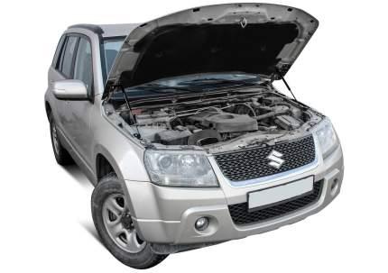 Упоры капота АвтоУПОР для Suzuki Grand Vitara III 2005-2015, 2 шт., USUGRA012