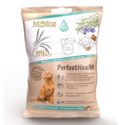 Хрустящие подушечки для кошек Molina Perfect Health Вывод шерстяных комочков, 50 г