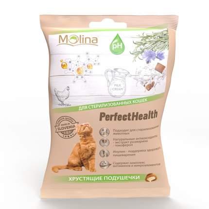 Хрустящие подушечки для кошек Molina Perfect Health со вкусом лосося, 50 г