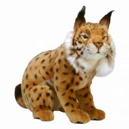 Мягкая игрушка Hansa Испанская рысь, 35 см