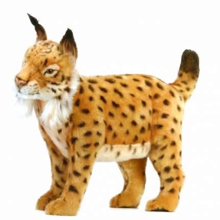 Мягкая игрушка Hansa Испанская рысь, 45 см