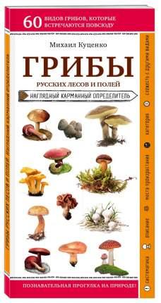 Книга Грибы русских лесов и полей