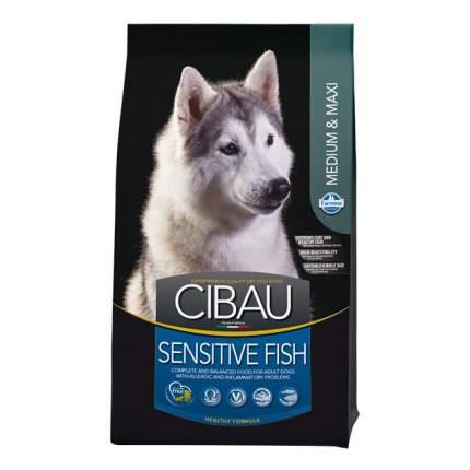 Сухой корм для собак Farmina Cibau Adult Medium & Maxi Sensitive, рыба, 12кг