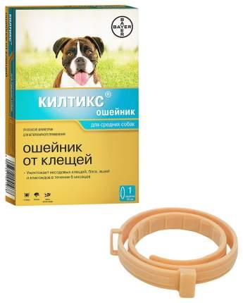 Ошейник для средних собак против блох, власоедов, вшей, клещей Bayer Килтикс желтый, 53 см