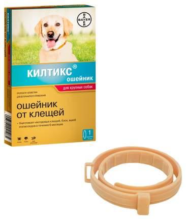 Ошейник для крупных собак против блох, власоедов, вшей, клещей Bayer Килтикс желтый, 70 см