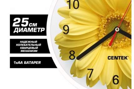Часы настенные Centek СТ-7102 Flower гербера