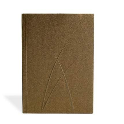 Записная книжка PaperOh Puro Bronze A5