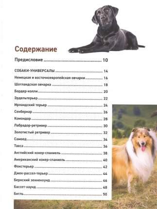 Книга Все породы собак. Большая иллюстрированная энциклопедия