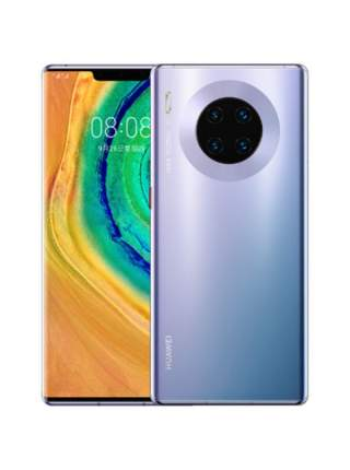 Смартфон Huawei Mate 30 Pro Space Silver (LIO-L29)