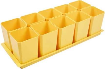 Набор горшков для рассады, 10 стаканов по 750 мл на поддоне (жёлтый)