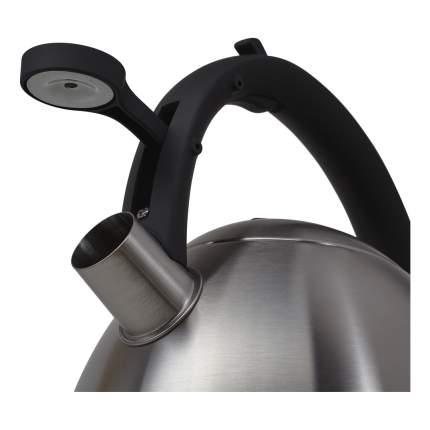 Чайник для плиты POLARIS 5916 3 л