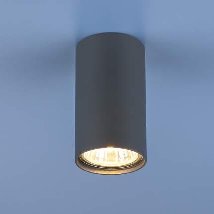 Потолочный светильник Elektrostandard