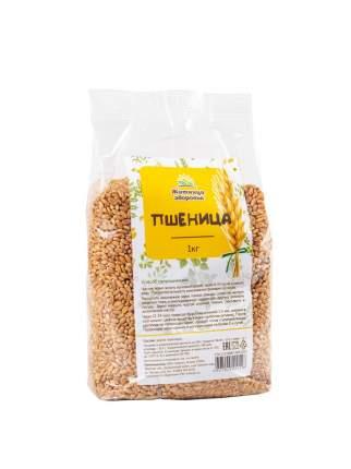 """Пшеница для проращивания """"Житница здоровья"""" 1кг."""
