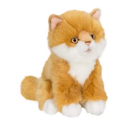 Мягкая игрушка Anna Club Plush Котёнок сибирский рыжий, сидит 15 см