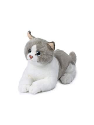 Мягкая игрушка Anna Club Plush Кот Рэгдолл серо-белый, лежит 20 см